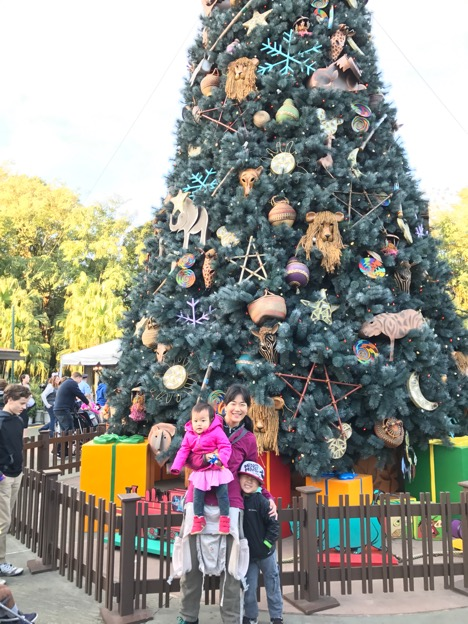Entrance of Animal Kingdom with large Christmas Tree
