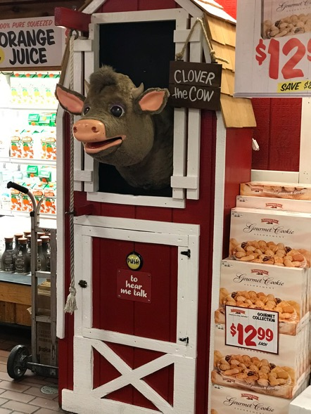 Clover the cow at Stew Leonard's