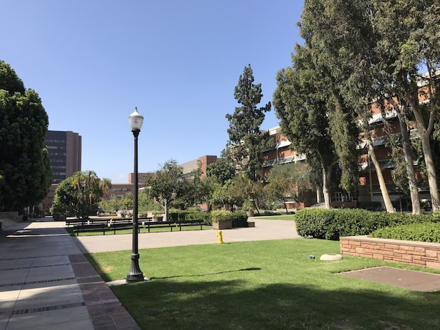 UCLA Science and Engineering